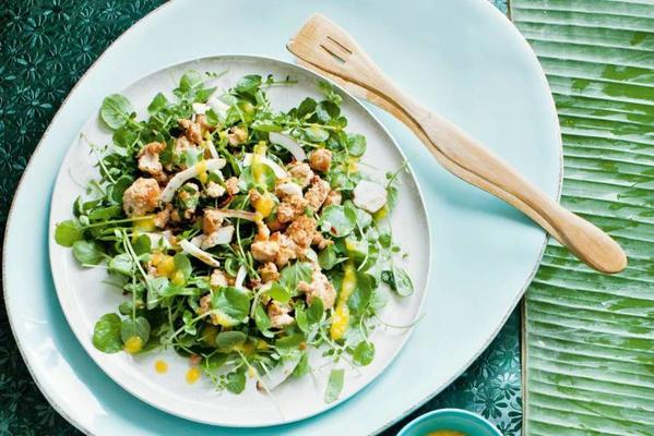 watercress salad with coconut and chicken