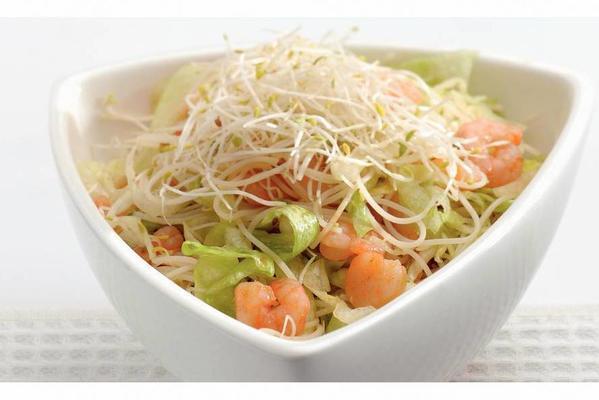 oriental noodle salad with prawns