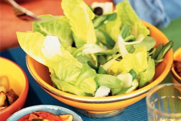 green salad with manchego and olives