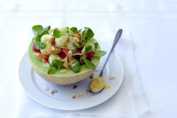 meal salad with chicken and melon