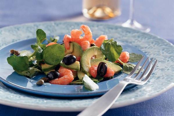 salad with jumbo shrimp, avocado and watercress
