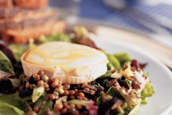 lukewarm lentil salad with goat cheese