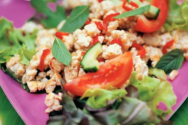 mixed lettuce with turkey mince