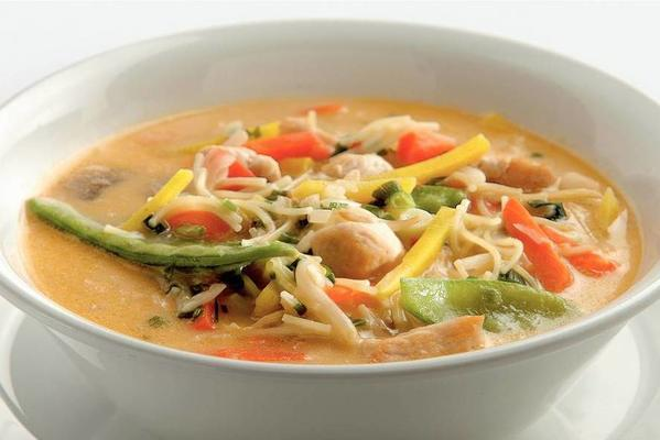 thai chicken-vegetable soup with noodles