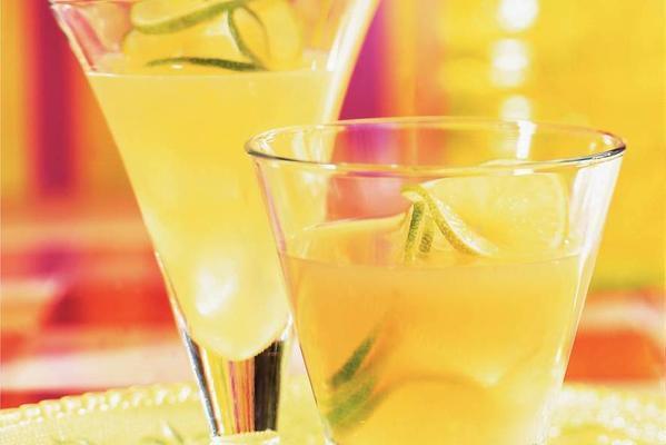fresh fruit drink: cactus-citrus drink