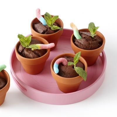 chocolate flowerpot cakes