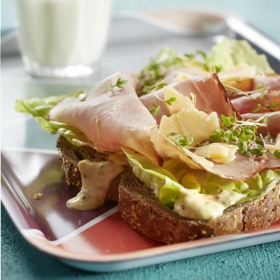 brown sandwich with mustard mayo, ham and old cheese