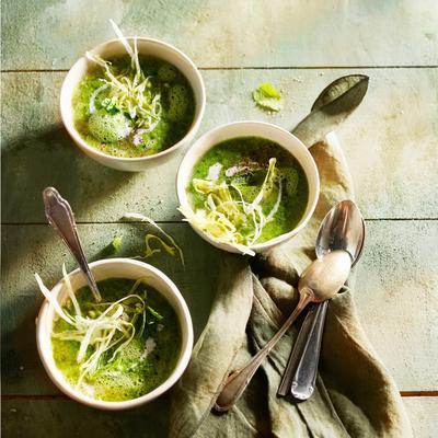 creamy lettuce soup with mint